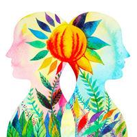マインドフルネスと健康の7つの柱について学ぶDVD
