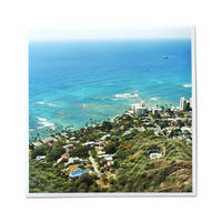Original Print - View from Diamond Head 1/1