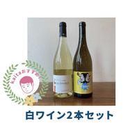 【限定3セット】kaitaセレクト!春におすすめ2本セット(白2)