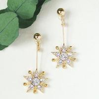 〈DE-ER175〉shine earring