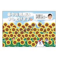 メッセージカード/暑中見舞い/20-0949/1セット(10枚)