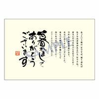 メッセージカード 年末便り 08-0319 1セット(10枚)