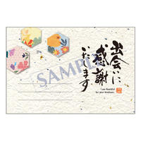 メッセージカード/ご挨拶状/20-0914/1セット(10枚)