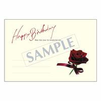 メッセージカード バースデー 08-0303 1セット(10枚)