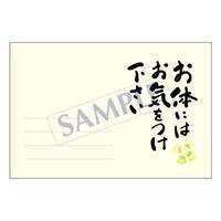メッセージカード  出会い 感謝 お祝い ご挨拶 08-0260   1セット(10枚)