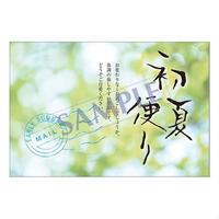 メッセージカード 季節の便り 18-0817 1セット(10枚)