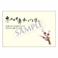 メッセージカード/季節の便り/寒中見舞い/08-0251/1セット(10枚)