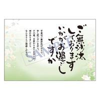 メッセージカード  出会い・感謝・お祝い・ご挨拶  17-0816  1セット(10枚)