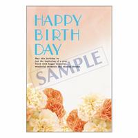 メッセージカード バースデー 14-0672 1セット(10枚)