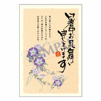 メッセージカード/季節の便り/13-0624/1セット(10枚)