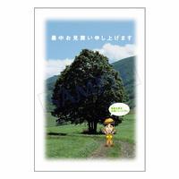 メッセージカード/季節の便り/10-0469(似顔絵ver)/1セット(10枚)