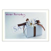 メッセージカード バースデー 08-0296 1セット(10枚)