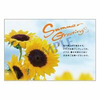 メッセージカード/季節の便り/13-0623/1セット(10枚)