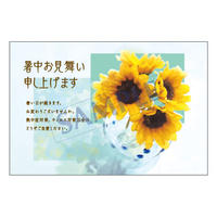 メッセージカード/暑中見舞い/20-0942/1セット(10枚)