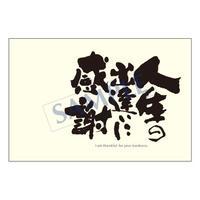 メッセージカード  出会い 感謝 お祝い ご挨拶 05-0120 1セット(10枚)