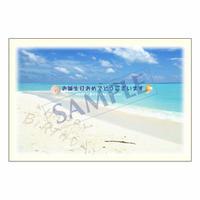メッセージカード バースデー 11-0526 1セット(10枚)