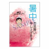 メッセージカード/季節の便り/13-0632(似顔絵ver)/1セット(10枚)