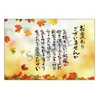 メッセージカード/秋便り/20-0955/1セット(10枚)