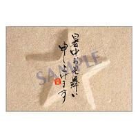 メッセージカード/季節の便り/13-0619/1セット(10枚)