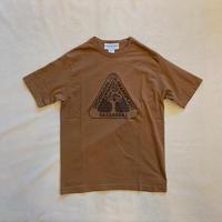SFSR T 1/2 (Brown) / SASSAFRAS