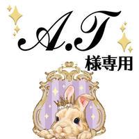 A.T様専用ページ