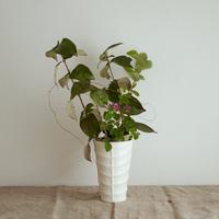 BAUER POTTERY |  Madagascar Vase