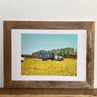 A Harvest「オイルペイント」  A4 ポスター アート & アンティーク ウッド フレーム