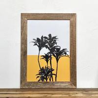 ドラセナ パープルコンパクタ「植物 カラー」  A4 ポスター & 古材 ポスターフレーム 壁掛け