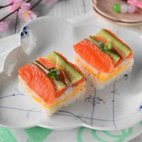 押し寿司型 ミニ