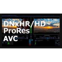 cineXtools Standard  +  AVC初年度サブスクリプション・ライセンス