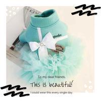 わんこの冬服♡Tiffany 風♡かわいいドレス
