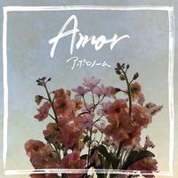 アポロノーム / 1st mini album『Amor』