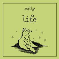 molly / molly 4th demo 「life」