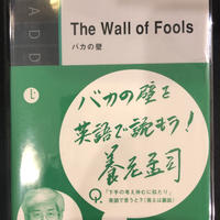 No.2 The Wall of Fools  バカの壁
