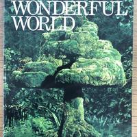 No.1 ハーモニカ&ギター ゆず/WONDERFUL WORLD 楽譜