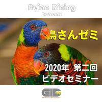 Avian Dining主催  鳥さんゼミ  第2回 代表的な種類と生態