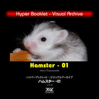 YILハイパーブックレット-ヴィジュアルアーカイブ「ハムスター01」