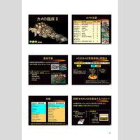 プライベートセミナー:爬虫類の臨床2018:カメの臨床Ⅱ(ハンドアウト)