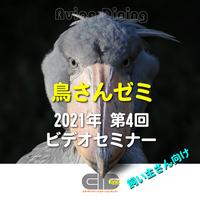 Avian Dining主催  鳥さんゼミ  第4回:身体検査