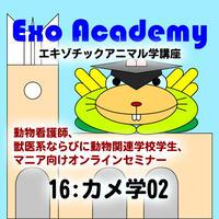 エキゾ学園:エキゾチックアニマル学講座:16 カメ学02
