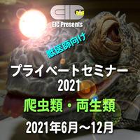 EIC プライベートセミナー2021:爬虫類・両生類