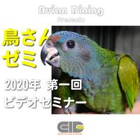 Avian Dining主催  鳥さんゼミ  第1回 鳥の解剖と生理