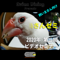Avian Dining主催  鳥さんゼミ  第3回:飼育について