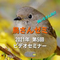 Avian Dining主催  鳥さんゼミ  第5回:羽毛・皮膚疾患 パート1