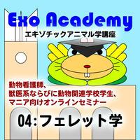 エキゾ学園:エキゾチックアニマル学講座:04 フェレット学
