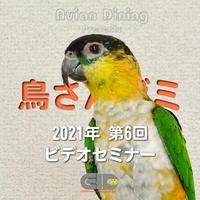 Avian Dining主催  鳥さんゼミ  第6回:羽毛・皮膚疾患 パート2