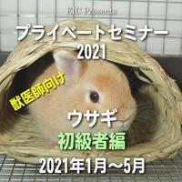 EIC プライベートセミナー2021:ウサギ初級者編