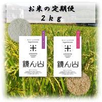 お米の定期便  2kg