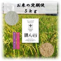 お米の定期便  5kg
