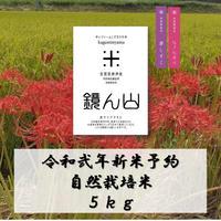 令和弐年新米予約 自然栽培米 5kg